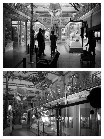 Collectif des Routes - Les Fausses Cicatrices - Tournage au Musée d'Histoire Naturelle Lille - Benoît Duvette - Baptiste Legros - Eliott Pradot